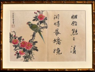 click for detailed image ChineseWCParrotFrVLG.JPG