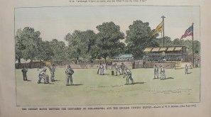 click for detailed image cricketvlg.jpg
